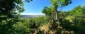 Des Quatre-Sapins au plateau de Cita