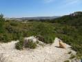 Panorame au sommet du Castellas