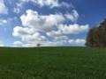 Champignol-lez-Mondeville en panoramique