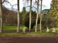 Parc Bargoin ...