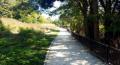 Parc de l'Île Saint-Denis - Chemin le long de la Seine