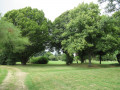 Parc du Douaire à Boissets