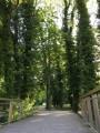Parc du Moulin