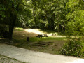 Parc du Sourdon