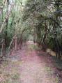 Passage couvert le long de la Gimone