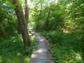 Circuit des étangs de Chavannes-sur-l'Étang