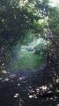 Par les puys et les étangs à Rosiers-d'Égletons