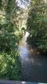 Passage sur l'Orvanne
