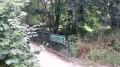 Passerelle Forestière