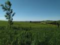 Le Plateau de l'Escandorgue