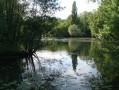 Du Moulin de Vonté à Veigné