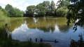Petit étang dans le Grand Bois d'Ionne