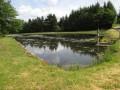 Petit étang du Martinet