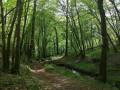 Le chemin des étangs au départ de Troche