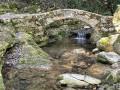 Petit pont de pierre