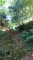 Petit sentier vers le moulin de Quistinic