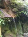 Petite Cascade  au pont de Tuve