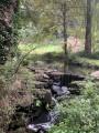 Petite cascade du ruisseau du Bois de Porcé