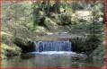 Petite cascade sur le ruisseau de Belbriette