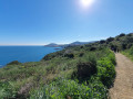 D'Argelès à Collioure par le sentier côtier