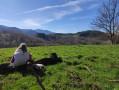 Pique-nique avec vue sur les Pyrénées