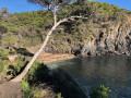 Tour intégral de la Presqu'île de Giens
