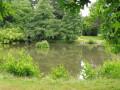 Plan d'eau du parc