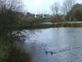 Tour de plan d'eau communal de Bourg-Blanc