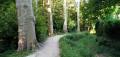 Coulées vertes, parcs et petites rues dans Antony