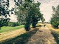 Plateau des Filhols