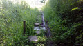 Le Marais de Bossenot
