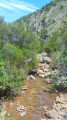 Point d'eau courante dans le ravin des Lentisques.