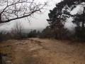 Des rochers de Cuvier Chatillon à Bois-le-Roi et retour