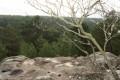 Point de vue sur les Gorges de Franchard lettre P