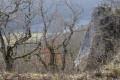 Gouffre et archéologie au Val-Suzon