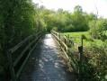 Pont au dessus des zones humides
