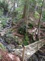 pont de bois sur torrent