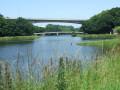 Pont de la Villeneuve et paserelle