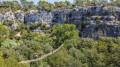 Pont de singe du Canyon Forest