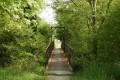 Pont Renaud