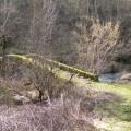 Pont sur La Borne