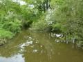 Pont sur le ruisseau des cinq bondes