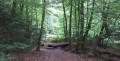 Balade vers la source du Ruisseau du Defoi