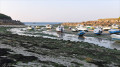 Port-Neuf marée basse