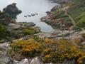 Vers la côte Sud de l'Île de Groix
