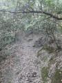 7- Portion de sentier entre le ruisseau des Horts et le WP 2