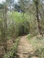 Descente vers le Mesnil Guyon
