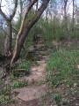 Premier escalier du parcours