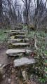 Premier escalier