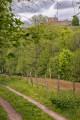 Première vue sur le château du Lichtenberg